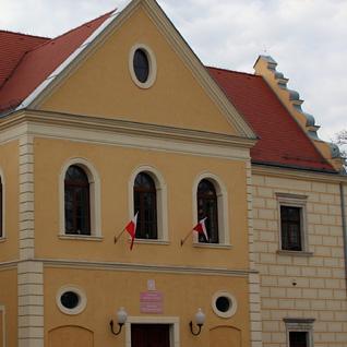Licea w Działoszynie